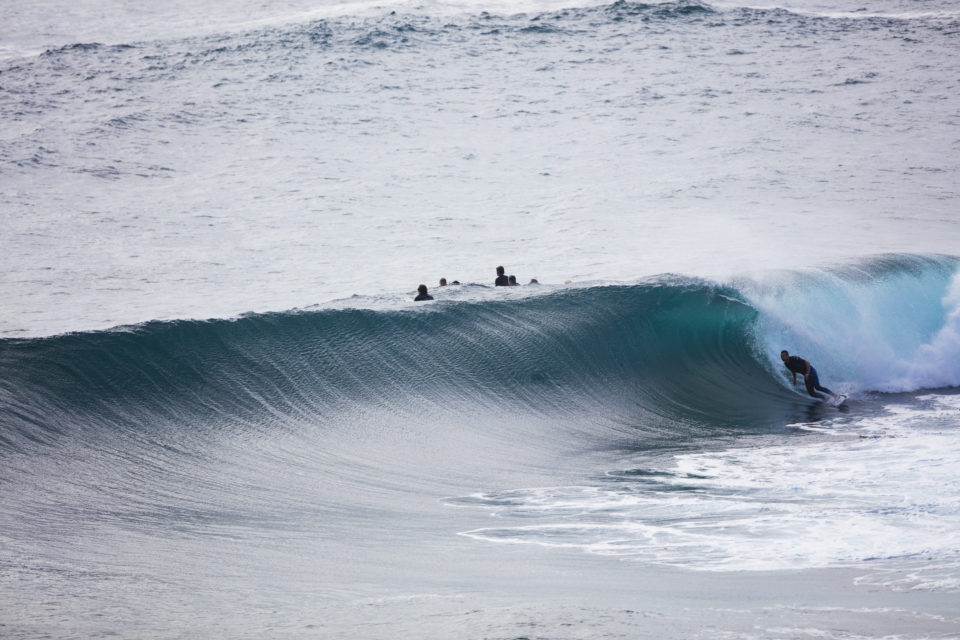 A surfer bottom turns in fun conditions at LA  on the Northern beaches of Sydney, NSW, Australia.