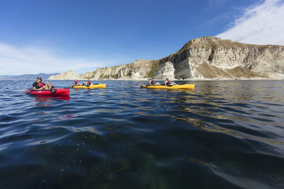 Pedal kayaking with Levi of Levi Pedal Kayak Tours at Kaikoura. Photo: Derek Morrison