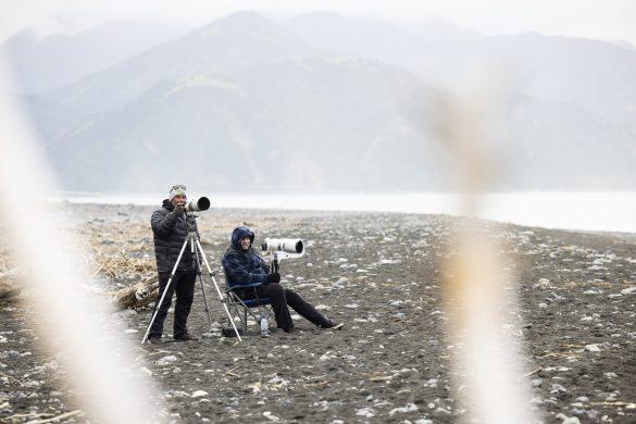 The paparazzi. Photo: Derek Morrison